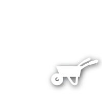 Schimmel in Wohnräumen