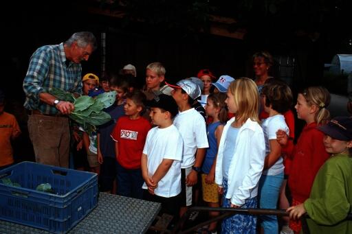 Eine Kindergruppe bekommt einen Kohlrabi erklärt