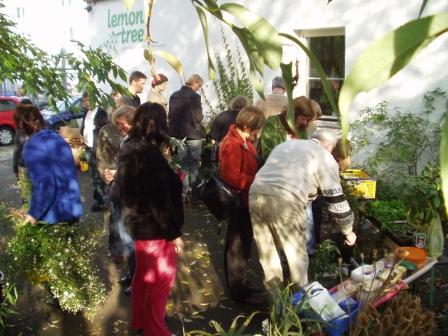 Pflanzentauschbörse Bielefeld