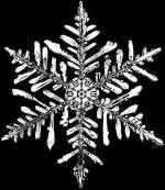 Sternförmige Schneeflocke