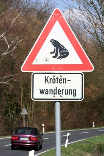 Kröten-wanderung Warnschild