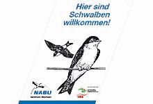 NABU-Aktion zum Schutz der Schwalben